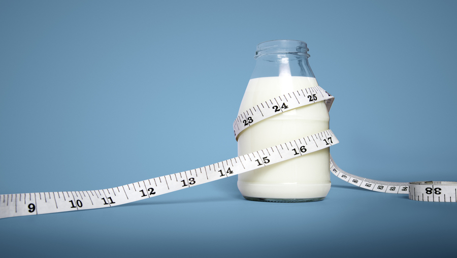 Dairy Protein and Healthy Ageing