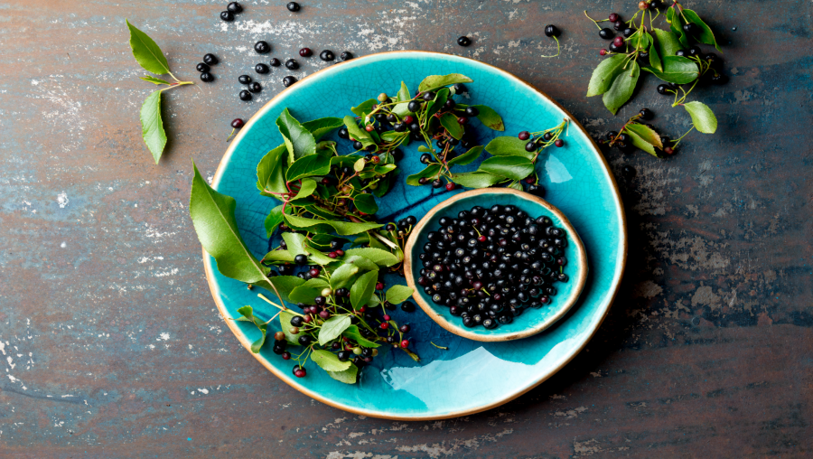 The Impact Of Maqui Berry On Risk Factors For Chronic Diseases