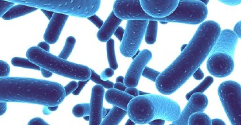 Bifidobacterium-lactis-V9.jpg_350x350.jpg