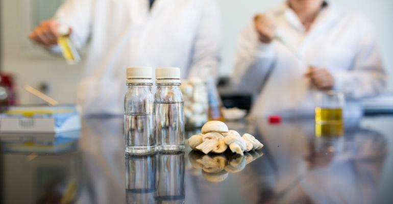 Mushroom extract as clean label preservative