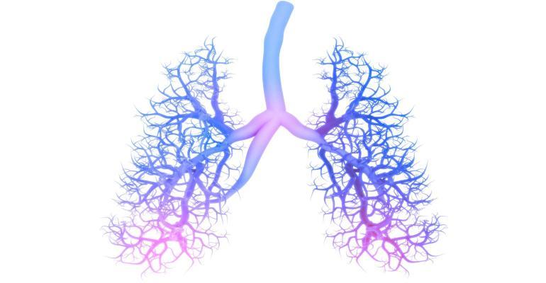 Probiotics enhance immune and respiratory health.jpg