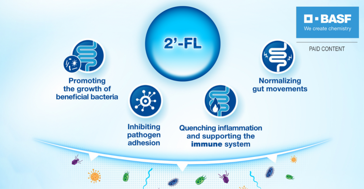 Understanding human milk oligosaccharides – infographic