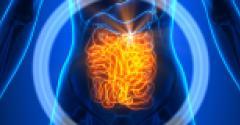 VFI-DM-DigestiveHealth-0619-1200x400.jpg