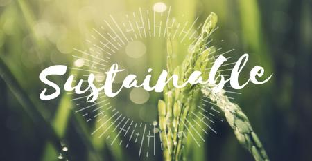 Sustainable word with green plant background
